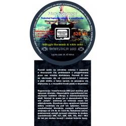 Solfeggio Harmonic & white noise - 528 Hz – Manifestacja woli