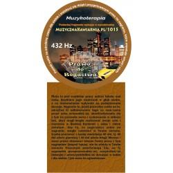 Prawo do Bogactwa 432 Hz